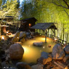 Japanese government encouraging hot springs to ease society anxiety