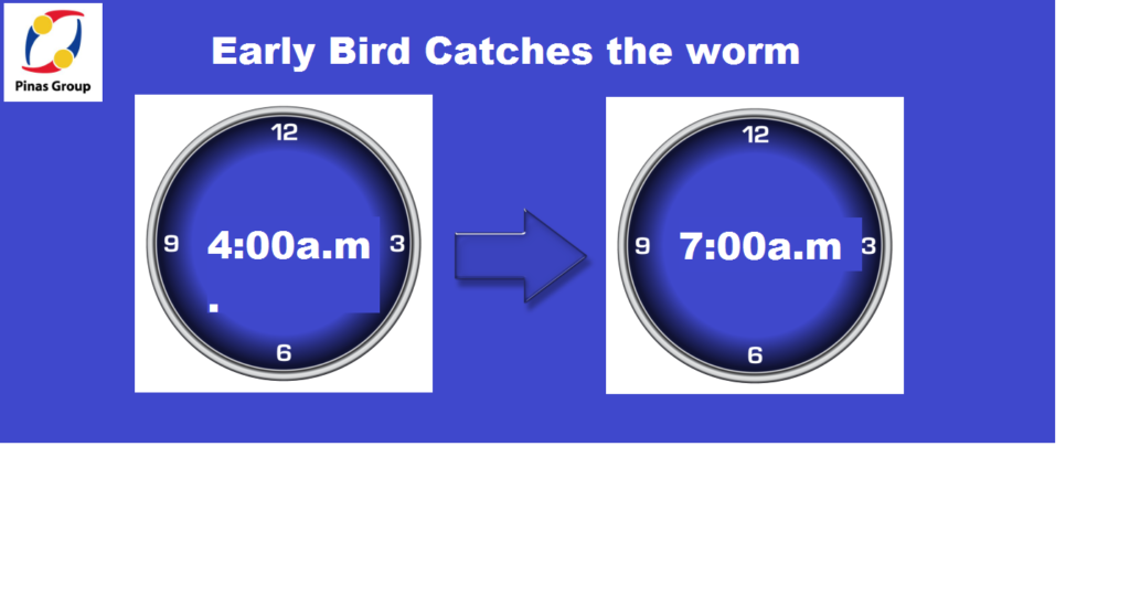 early-bird-catches-the-worm